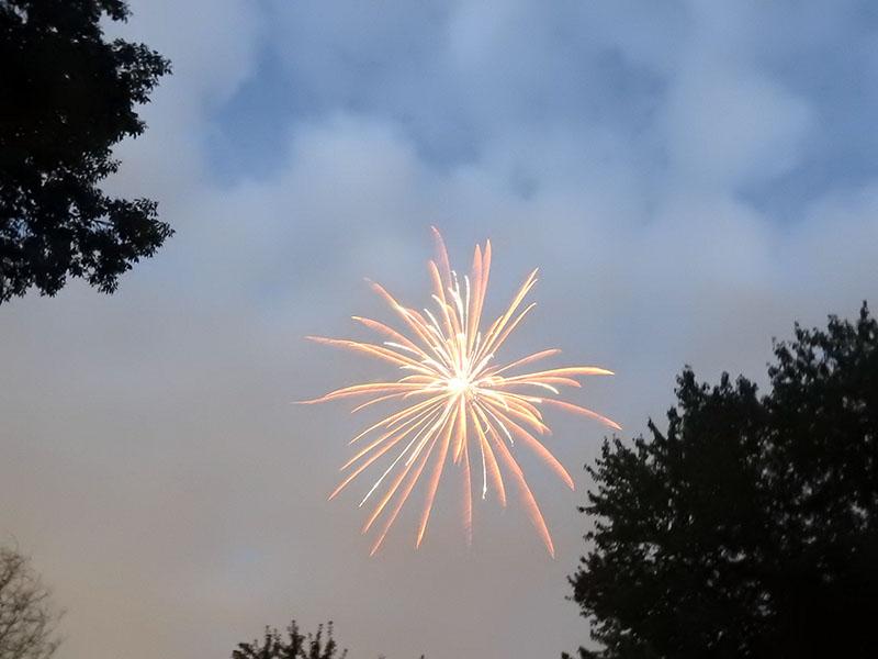 Exploding firework in sky