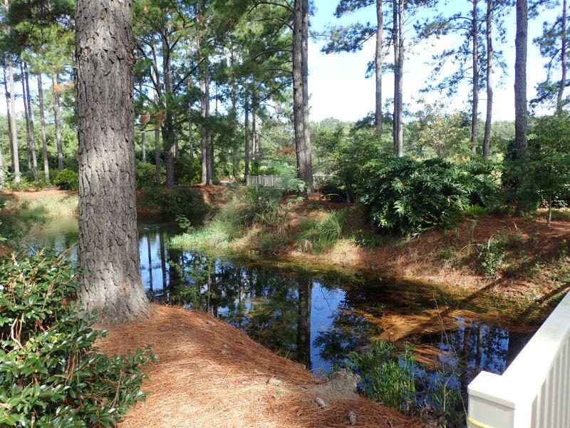 Photo of Lake area for Botanical Gardens